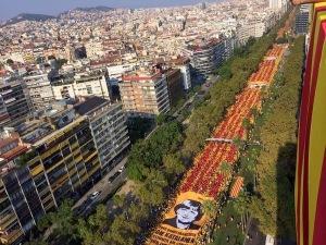 Via catalana 2014 V